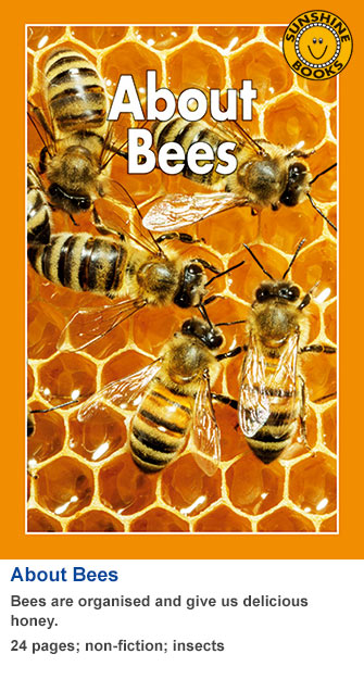 About Bees